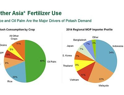 ASIAN POTASH DEMAND